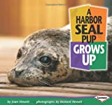 img - for A Harbor Seal Pup Grows Up (Baby Animals (Learner Classroom)) book / textbook / text book