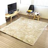 日本製 plywood オリジナル 電磁波99%カット 電子コントロールカーペット&選べる ラグセット [ モダンフェザー/エクリュ ]