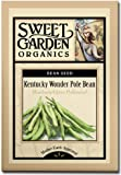 Kentucky Wonder Pole Bean - Heirloom Seeds