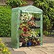 3 tier mini greenhouse cover
