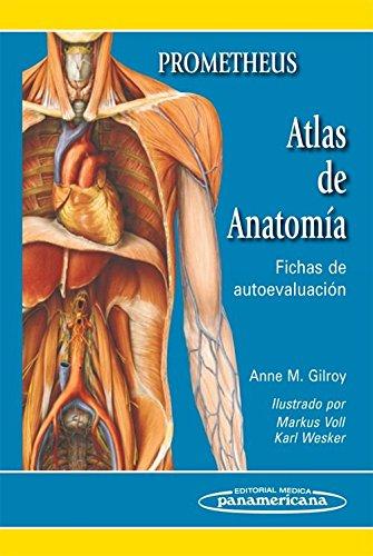 Atlas de Anatomía: Fichas de autoevaluación