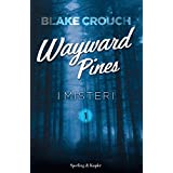 I misteri. Wayward Pines: 1