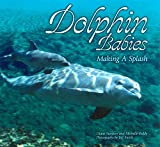 img - for Dolphin Babies: Making a Splash by Diane Sweeney (1998-04-02) book / textbook / text book