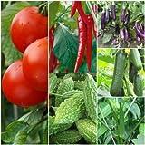 Biocarve Summer Vegetable Kit - 6 Pkts