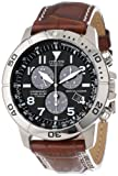 "Citizen Mens BL5250-02L ""Eco-Drive"" Leather and Titanium Watch"
