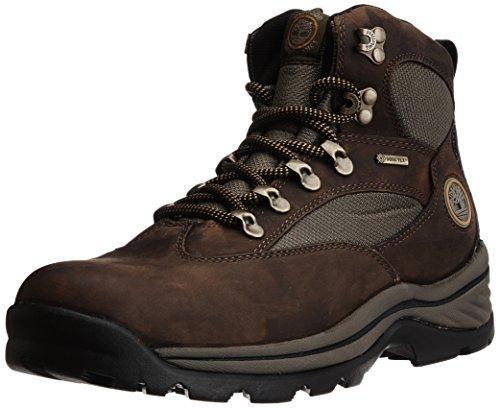 Timberland CHOCORUA TRAIL GTX GREIGE 18194, Scarpe da trekking uomo, Marrone (Braun (Brown w/ Green)), 49