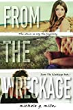 From The Wreckage (From The Wreckage Series) (Volume 1)