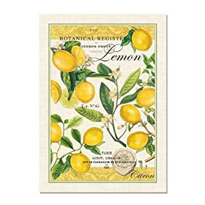 Michel Design Works Lemon Kitchen Towel Natural Woven Cotton Ho