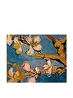 Especial Arte Lienzo Amandelbloesem Multicolor