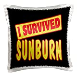 3dRose pc_118273_1 I Survived Sunburn Survial Pride and Humor Design - pillow Case, 16 by 16