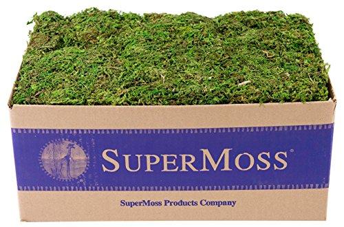 SuperMoss (23805) Mountain Moss Preserved, Fresh Green, 3lbs