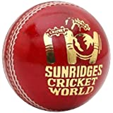 SS Cricket World Leather Ball, Pack Of 12 (Red)