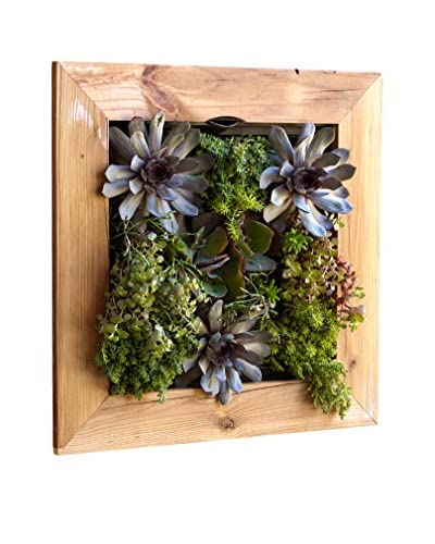 bambeco Reclaimed Wood Eco Living Wall, Natural