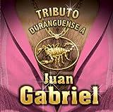 echange, troc Various Artists - Juan Gabriel: Tributo Durangeuense