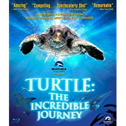 Turtle: The Incredible Journey [Blu-ray]