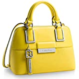 Calvin Klein Valerie Studio Dome Satchel Bag Handbag