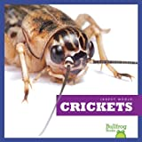 img - for Crickets (Bullfrog Books: Insect World) (Insect World (Hardcover)) book / textbook / text book