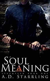 Soul Meaning by AD Starrling ebook deal