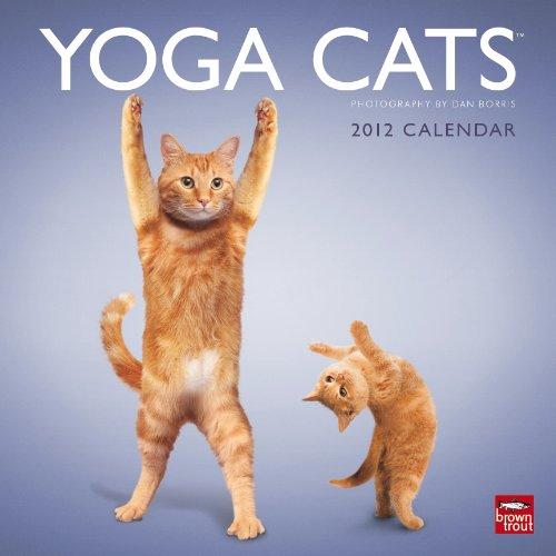 Yoga Cats 2012 Calendar