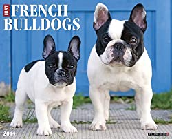 French Bulldogs 2014 Wall Calendar made by Willow Creek Calendars