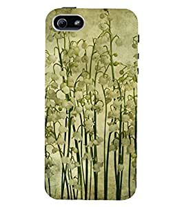 D KAUR Beautiful Pattern Back Case Cover for Apple iPhone 5::Apple iPhone 5S