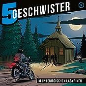Im unterirdischen Labyrinth (5 Geschwister 14)   Tobias Schier