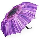 Plemo Regenschirm, Automatik Taschenschirm Violett Daisy...