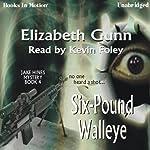 Six-Pound Walleye: A Jake Hines Mystery, Book 4 | Elizabeth Gunn