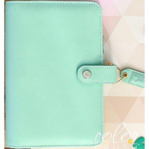 webster-s-seiten-farbe-crush-a2-kunstleder-personlichen-planer-6-ringbuch-mint