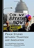 img - for Peace Studies Between Tradition and Innovation book / textbook / text book