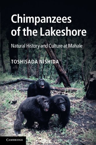 Chimpanzees of the Lakeshore: Natural History and Culture at Mahale