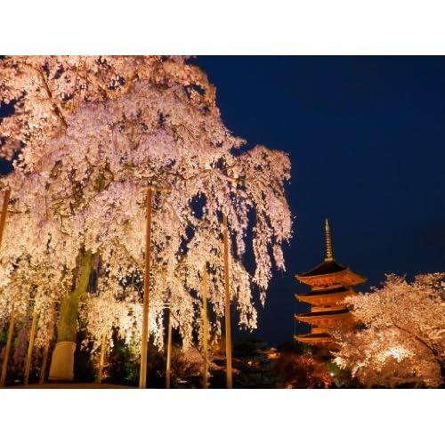 感動の京都観光スポットと攻略特集~京都観光に必須な本~~本当に感動する京都にあいたい~