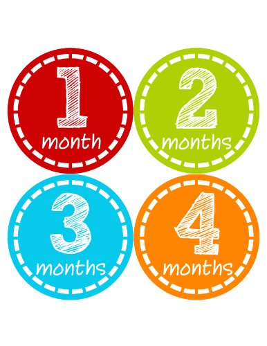 Months in Motion 289 Monthly Baby Stickers Baby Boy Months 1-12 Milestone