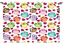 Ambesonne Girls Boys Toddlers Baby Room Daycare Decor Collection, Adorable Cute Comic Colorful Funny Owls Birds and Hearts, Window Treatments for Kids Bedroom Curtain 2 Panels Set, 108X84 Inches