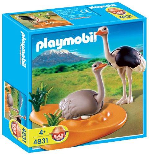 comprar huevos de avestruz amazon