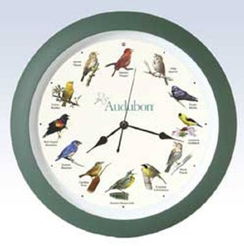 audubon bird clock