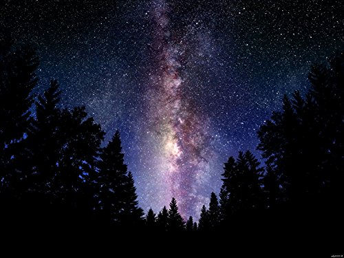 Milky Way Stars Trees Night Space 32X24 Inches Print Art Posters front-13332