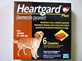 Heartgard Plus Heartworm for Dogs 51 - 100 lbs 6 Chewables Exp: 04-2016