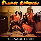 Teenage Headpar The Flamin&#39; Groovies