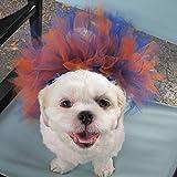Orange and Blue Dog Tutu