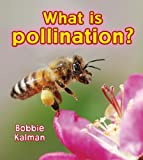 What Is Pollination? (Big Science Ideas)