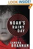 Noah's Rainy Day (A Liv Bergen Mystery Book 4)