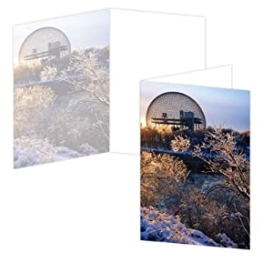 ECOeverywhere Biosphere Winter Boxed Card Set, 12 Cards and Envelopes, 4 x 6 Inches, Multicolored (bc12584)