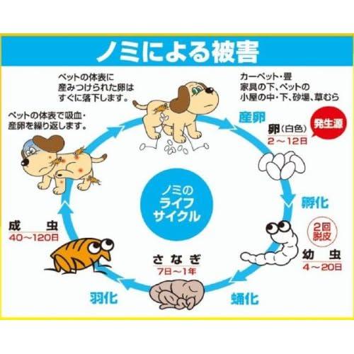 ハッピーペット 薬用マダニ・ノミとりリンスインシャンプー 犬猫用ポンプ 700ml