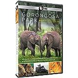 Gorongosa Park Rebirth of Paradise