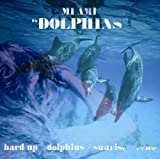 Dolphins [12 inch Analog]