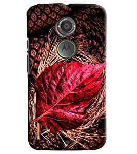 Blue Throat Red Leaf Inspired Hard Plastic Printed Back Cover/Case For Moto X2