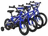 Vilano Boys BMX Style Bike