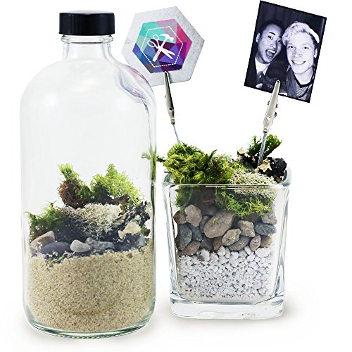 MakersKit Moss Terrarium & Photo Clip Project Kit