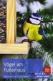 Vögel am Futterhaus: Erkennen und richtig füttern